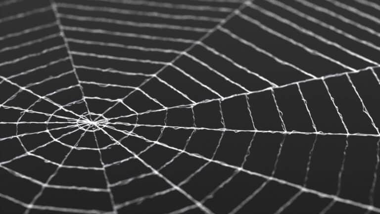 Houdini Tutorial: SpiderWeb